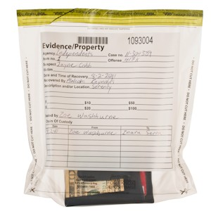 Clear Evidence Bags - 8-1/2W x 8H x 3D - 100/BX