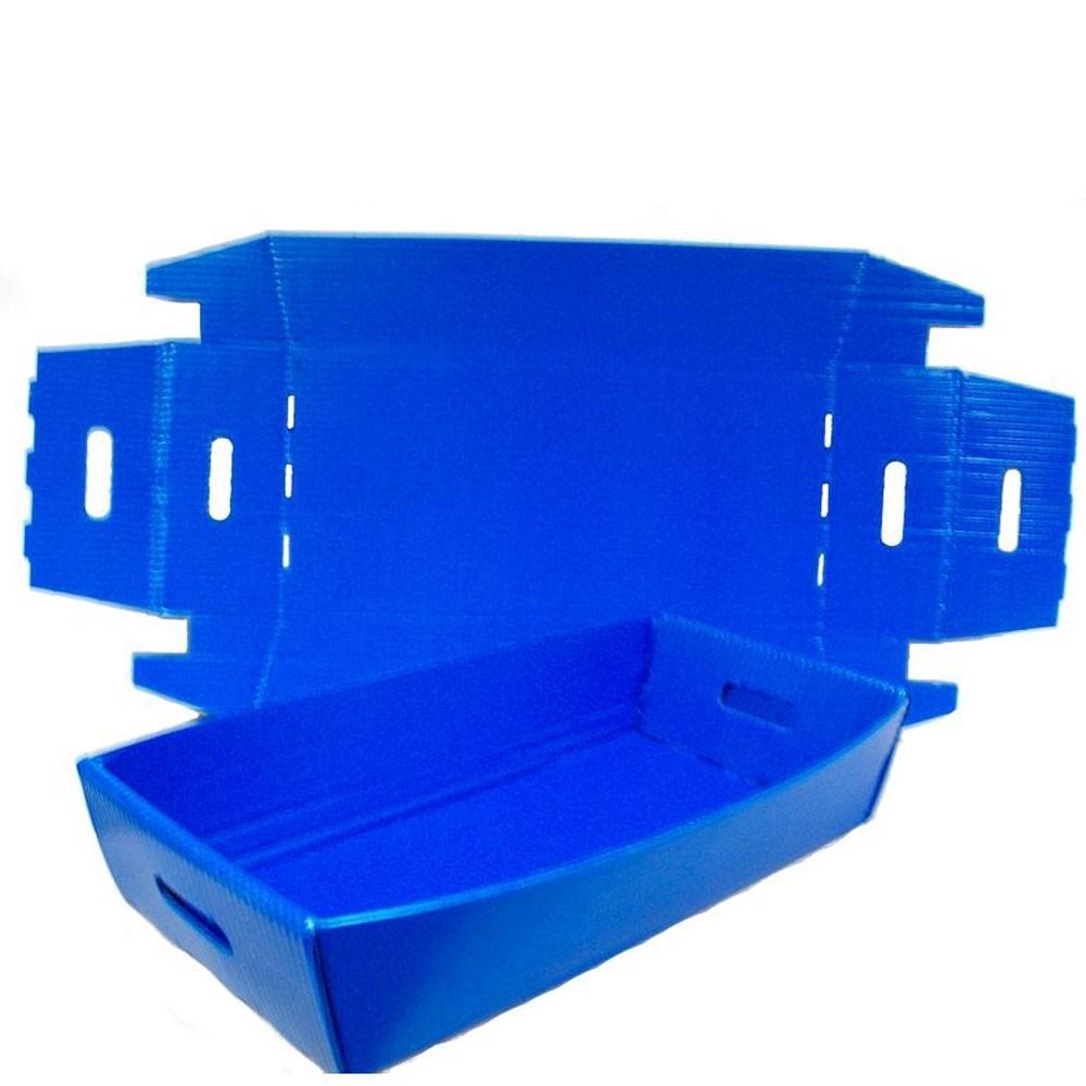 Knockdown Ballot & Mail Tray - 24W x 4-1/2H x 12D