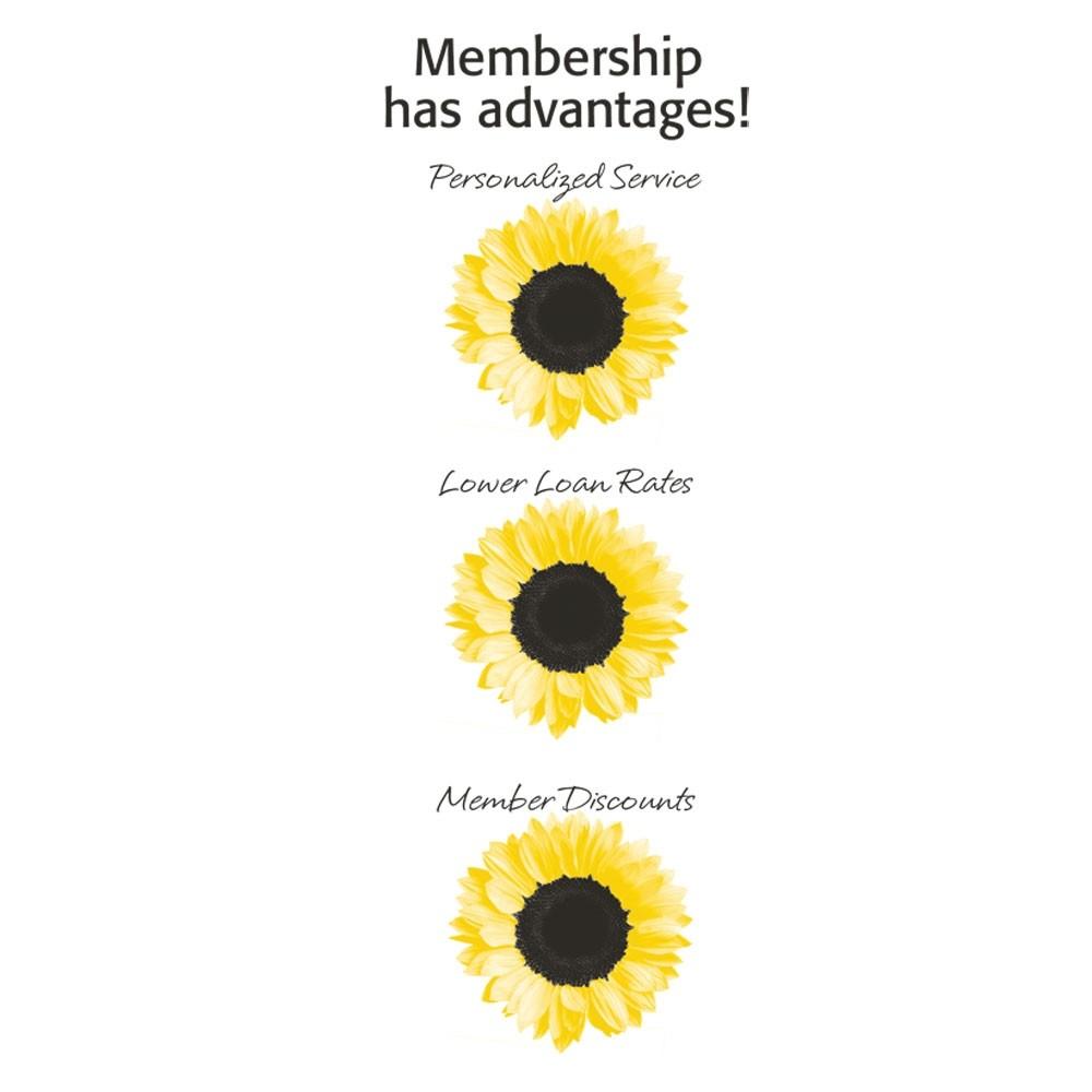 Pre-Designed Drive Up Envelope - Membership Has Advantages